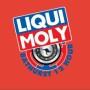 Liqu-Moly_Bathurst_Logo