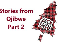 RallyCast Episode 107 – Stories from Ojibwe Part 2 with Mark Piatkowski, Steven Harrell, and Ian Holmes